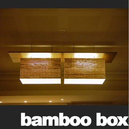 bamboo box lighting