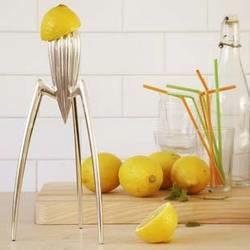 philippestarckalessi juicysalif1 kitchen