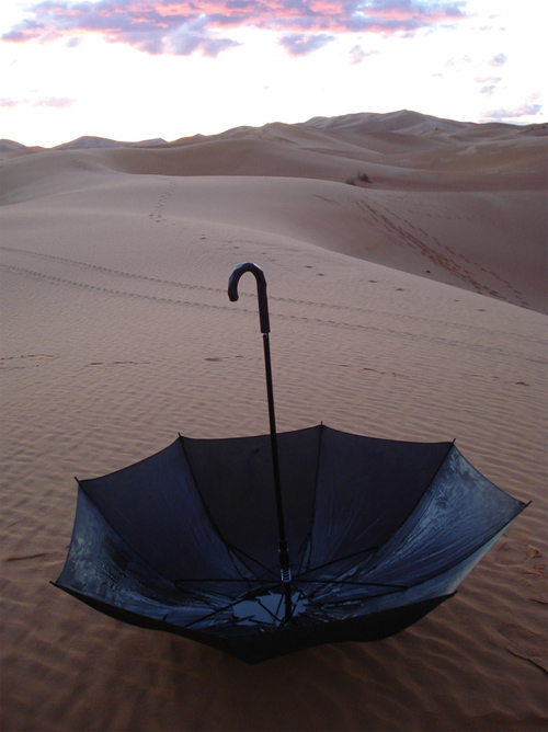 Thumbnail image of Umbrella Design Harvests Desert Moisture for Childrens' Hospital