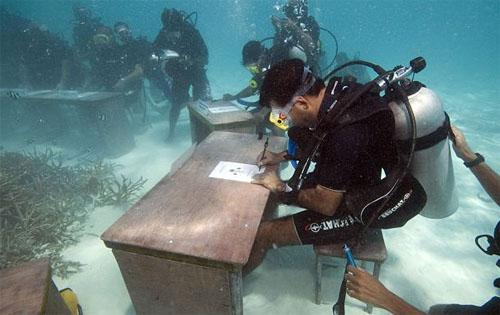 MaldivesUnderwater green