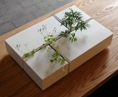 weeds diy