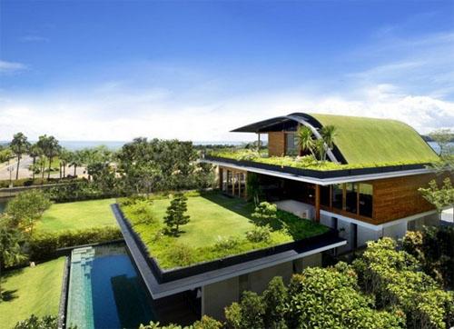 Meera House1 green