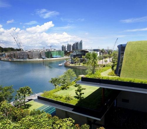 Meera House4 green