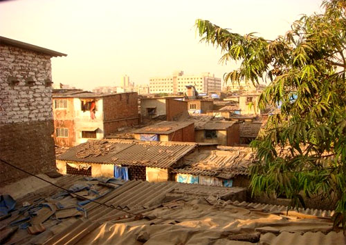 slum1 green
