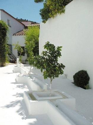 Convento 1 green