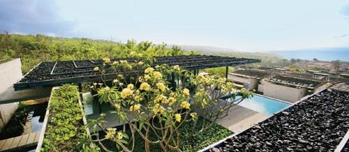 alila villas 9 green