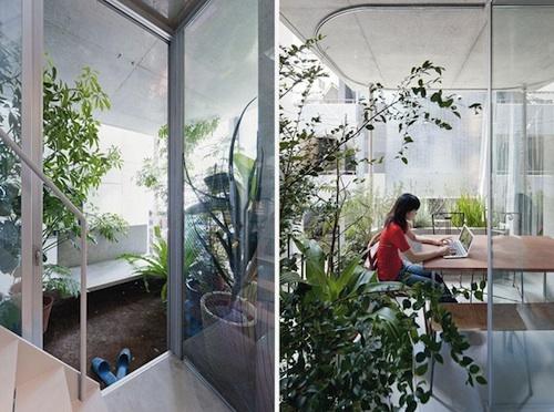 vertical garden 1 green