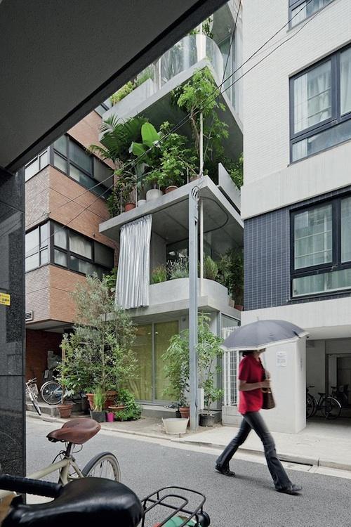vertical garden 3 green