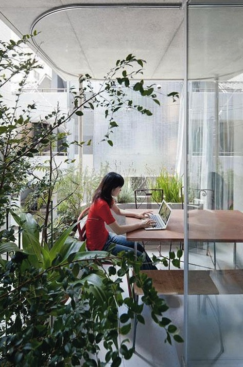 vertical garden 4 green