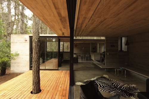 JD House 7 architecture