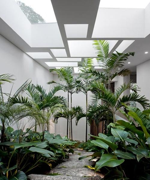 Casa Grecia2 architecture