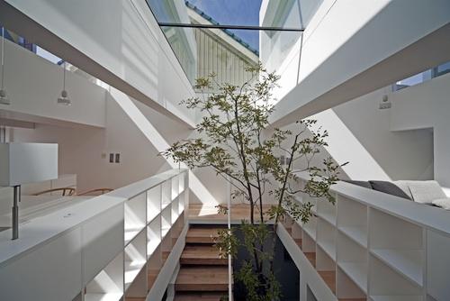 machi1 architecture