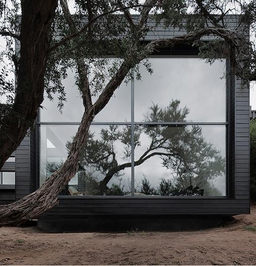 zen10 architecture