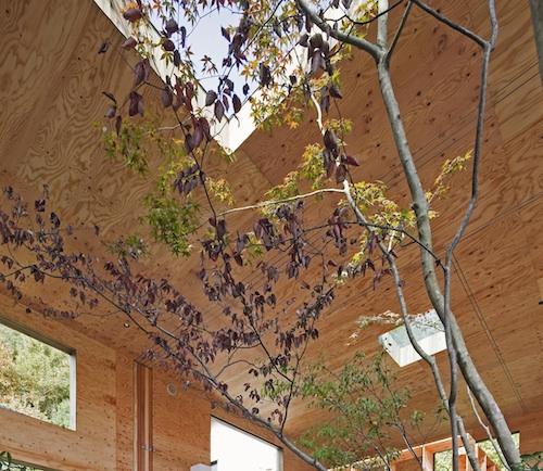 nest4 architecture