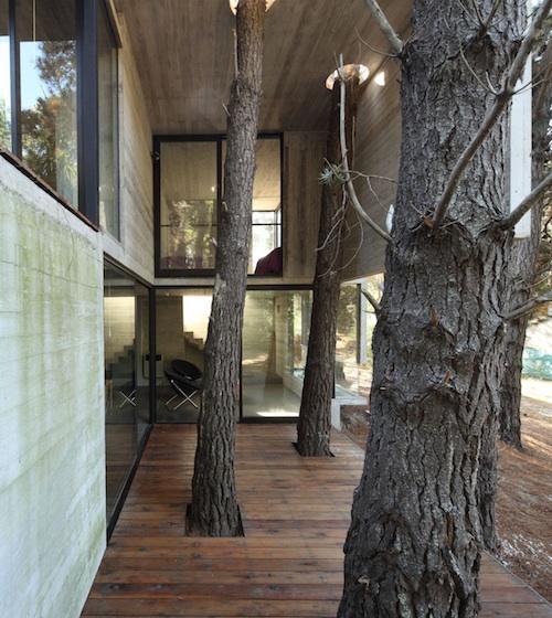 franz house2 architecture