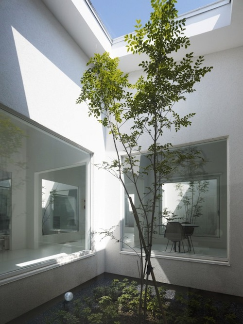 Serene Minimalism in a Zen-Like Dental Office