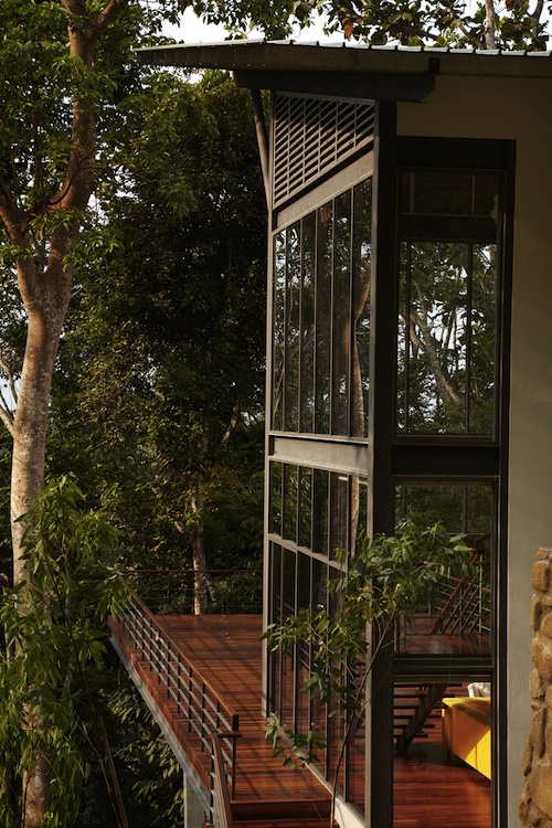 The Deck House Participates in the Malaysian Rainforest