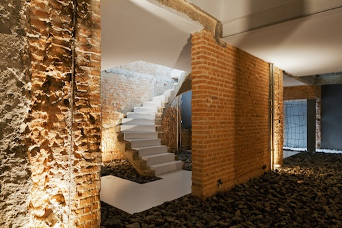 casa rex8 architecture