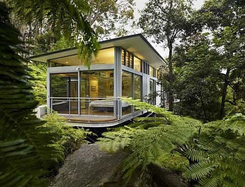 Glass Tree House Perched In The