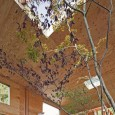nest4 115x115 architecture