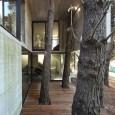 franz house2 115x115 architecture